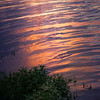 Delicate Ripples