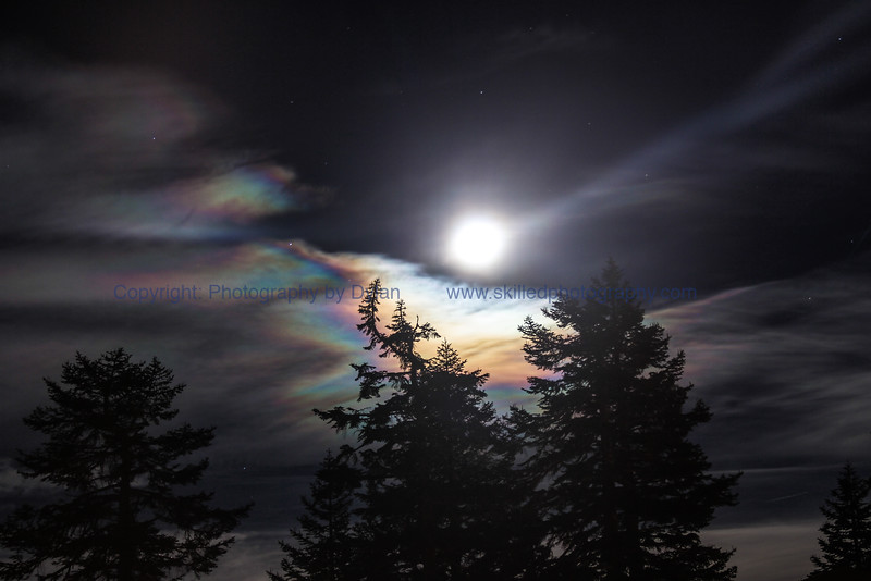 Mystical Mammoth Moonbow