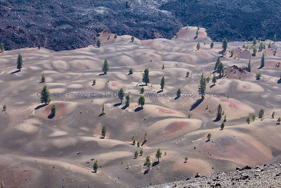 Painted Sand Dunes