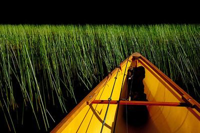 grassy paddle