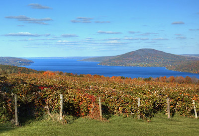 canandaigua grape view