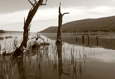 canandaigua lake in sepia