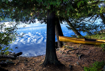 sky paddle