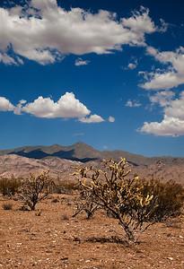 hot desert