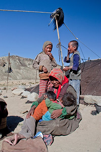 Nomads of Ladakh