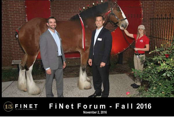 FiNet 2016 with Clydesdale
