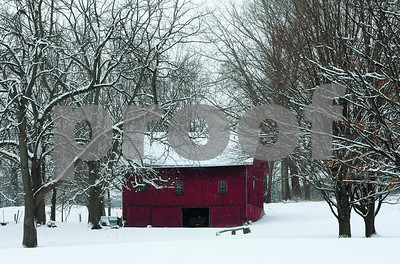 Spencer Tulis / Finger Lakes Times Weekend snow covers tree branches and the roof of this red barn on Old State Road in the town of Benton saturday.
