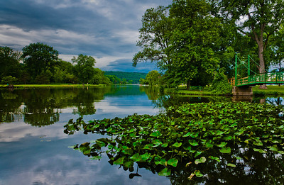 Lily pads and reflected storm clouds in a pond at Stewart Park, Ithaca, New York