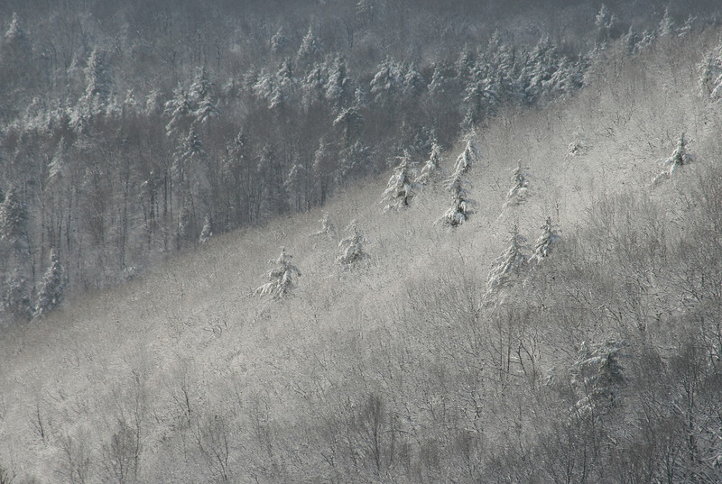 Snowy hillside in Newfield