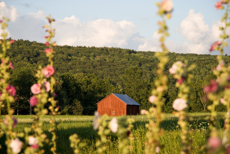 Finger Lakes Country
