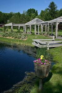 Pond at Six Mile Creek Vineyard