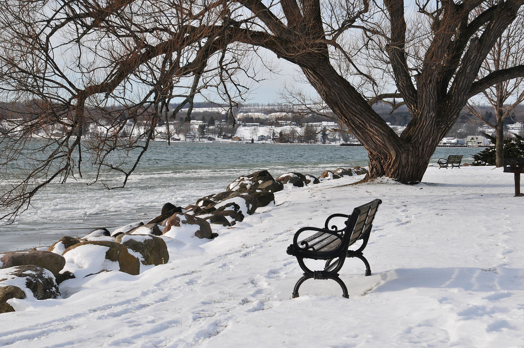 Bench at Canandaigua Lake