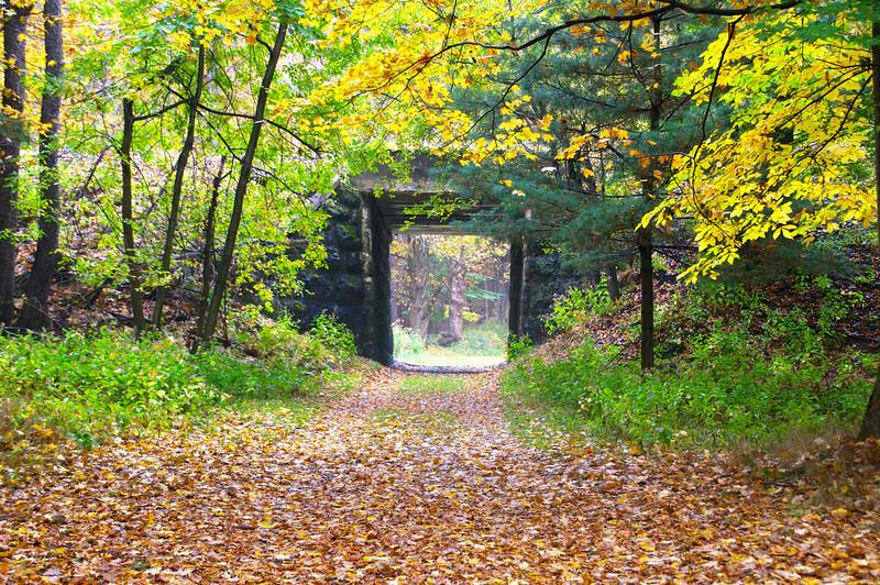 Through the railroad bridge