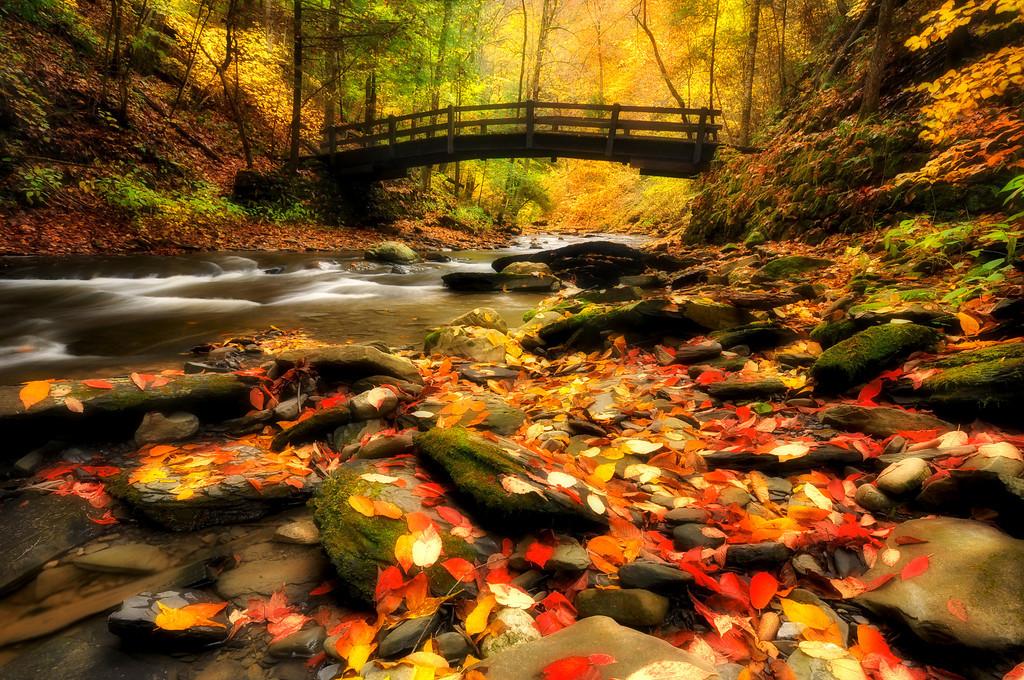 Wooden Bridge over Fillmore Glen Creek, Finger Lakes.