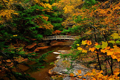 The Wooden Bridge at Buttermilk Falls State Park