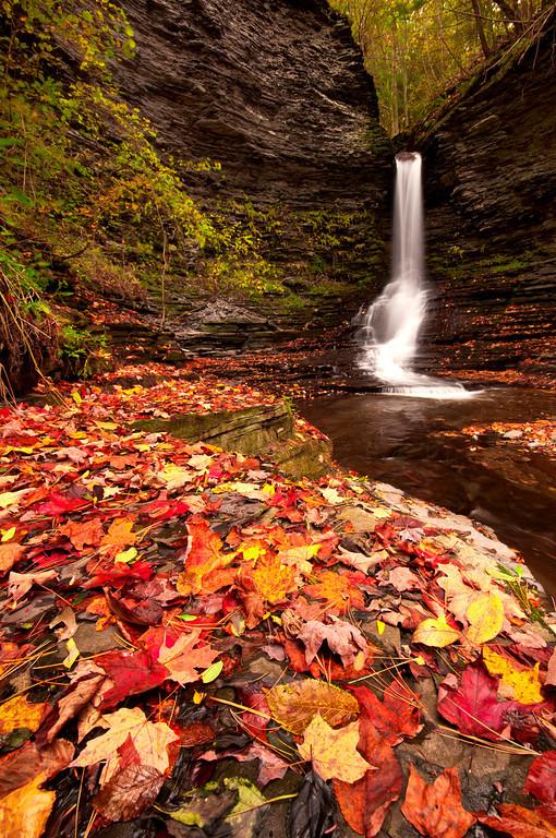 Excelsior Glen Waterfalls, Finger Lakes.