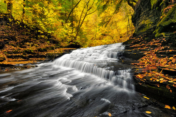 Waterfall surrounded by autumn colors.