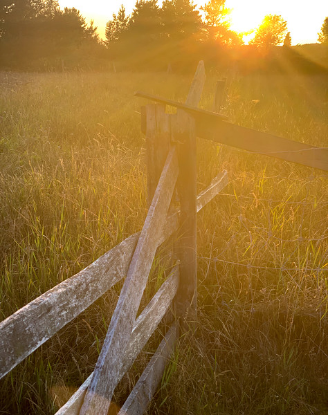 Sunset and fence, Jurmo, Finland