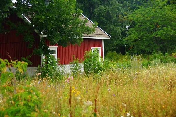 A red cottage in the Finnish archipelago.