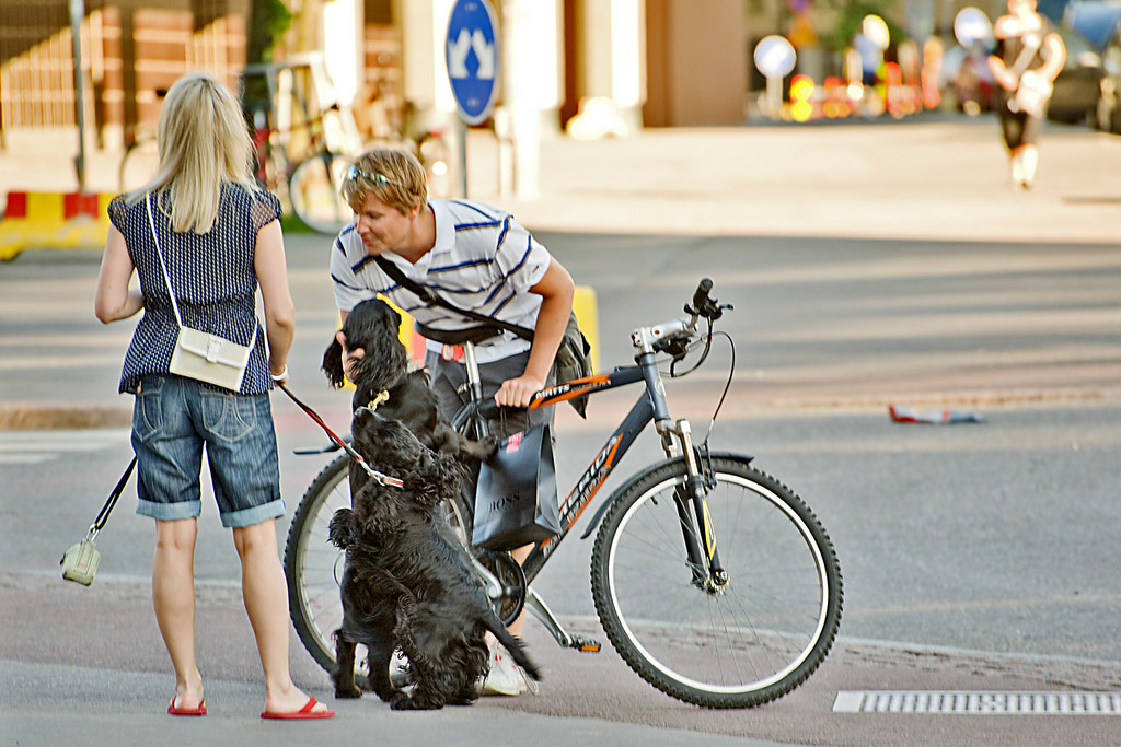 Saturday, July 3, 2010<br /> <br /> By Request: The Two Bike-Riding, Coffee-Sipping, Ice Cream-Eating Dogs of Helsinki. <br /> <br /> Here you go Keith. I came across these dogs just after they had each finished eating a vanilja eskimo bar at one of the many stands dotting the city. The girl let them finish her large cup of Paulig Mokka khavia while the guy here is holding the bike steady for them while they get on. Ok, so they weren't doing it all at once, but I think they deserve points nevertheless. <br /> <br /> Oh, I would have photographed them actually riding the bike but I was suddenly distracted by a loaf of pulla from a nearby leipomo.