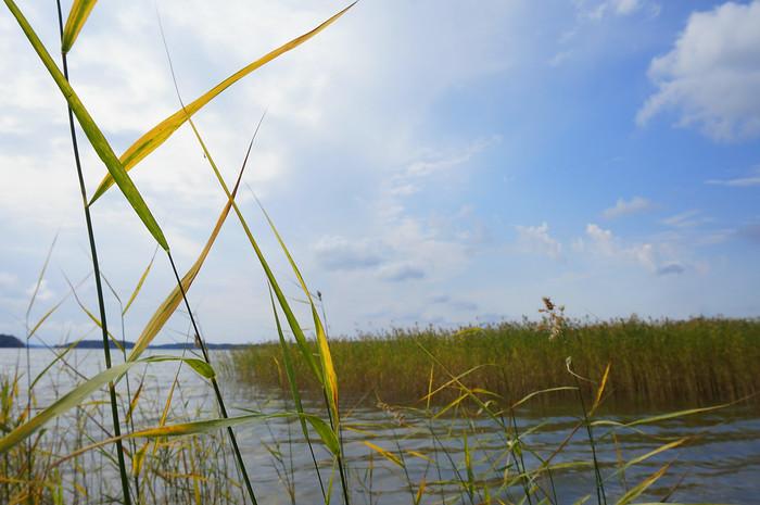 Enjoying a bit of nature in Kimito Island, Finland.