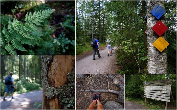 Enjoying the outdoors in Nuuksio, Finland.