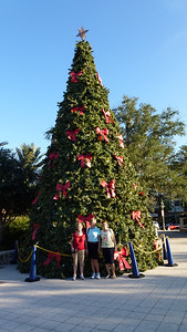 Christmas tree at Spanish Springs Square in the Villages.