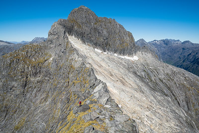 Climber stands on ridge below west face of Sheerdown Peak, Fiordland National Park