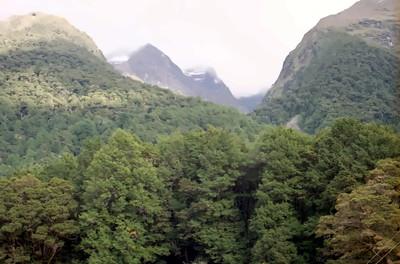 Murcott Burn, Eglinton Valley, Fiordland National Park