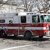 Cambridge, Ma. Rescue 1