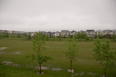 The flood waters receded and the green space was almost back to normal.
