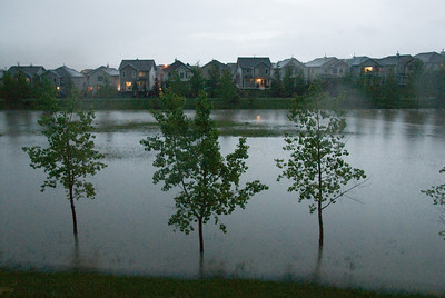The green space behind our house was almost completely flooded.
