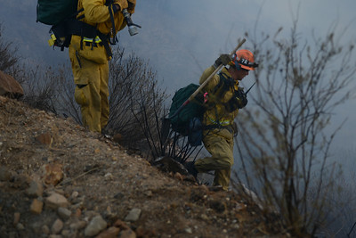 Dave_Mills_Photo_Bee_Fire-115