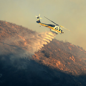 Dave_Mills_Photo_Bee_Fire-163