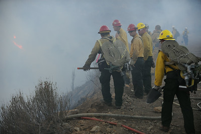 Dave_Mills_Photo_Bee_Fire-135