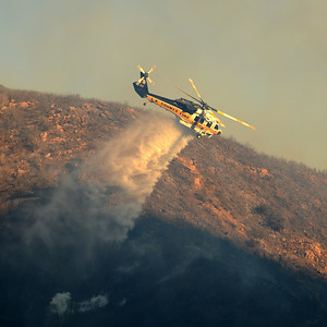 Dave_Mills_Photo_Bee_Fire-162