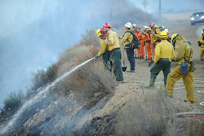 Dave_Mills_Photo_Bee_Fire-149