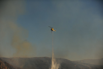Dave_Mills_Photo_Bee_Fire-143