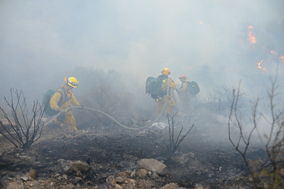 Dave_Mills_Photo_Bee_Fire-120