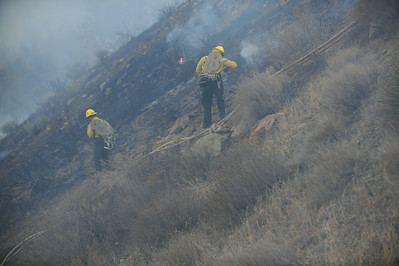 Dave_Mills_Photo_Bee_Fire-142