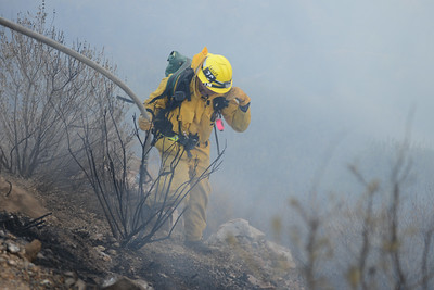 Dave_Mills_Photo_Bee_Fire-118