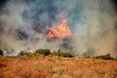 200905_Dave Mills_El Dorado Fire_023