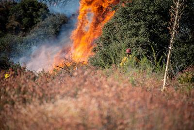 200905_Dave Mills_El Dorado Fire_065