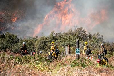 200905_Dave Mills_El Dorado Fire_026