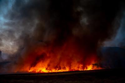 200906_Dave Mills_El Dorado Fire_358