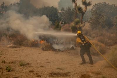210512_DM_Pine Fire_067