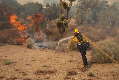 210512_DM_Pine Fire_064