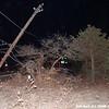 WJB__20081206_041