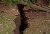 WJB_20080409_032