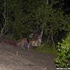 WJB__20080722_025